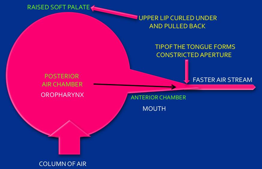Figure 4: Enlarged oropharynx space