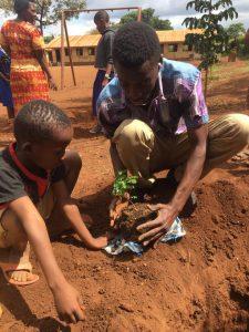 DMI students planting mpingo
